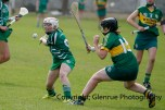 camogie in newcastle west 20-7-2014 (43)