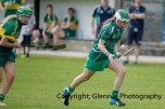 camogie in newcastle west 20-7-2014 (44)