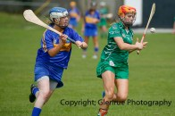 camogie in newcastle west 20-7-2014 (5)