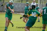 camogie in newcastle west 20-7-2014 (53)
