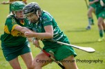 camogie in newcastle west 20-7-2014 (55)