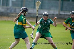 camogie in newcastle west 20-7-2014 (56)