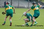 camogie in newcastle west 20-7-2014 (57)