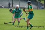 camogie in newcastle west 20-7-2014 (58)