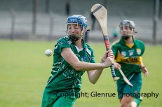 camogie in newcastle west 20-7-2014 (59)