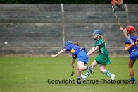 camogie in newcastle west 20-7-2014 (6)