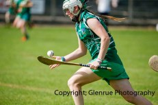 camogie in newcastle west 20-7-2014 (60)