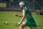 camogie in newcastle west 20-7-2014 (61)