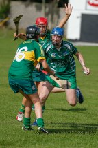 camogie in newcastle west 20-7-2014 (66)