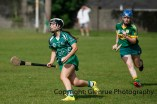camogie in newcastle west 20-7-2014 (68)