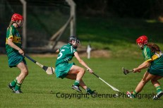 camogie in newcastle west 20-7-2014 (69)