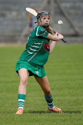 camogie in newcastle west 20-7-2014 (7)