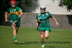camogie in newcastle west 20-7-2014 (72)