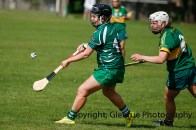 camogie in newcastle west 20-7-2014 (74)