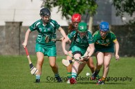 camogie in newcastle west 20-7-2014 (75)
