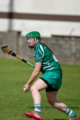 camogie in newcastle west 20-7-2014 (77)