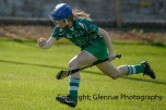 camogie in newcastle west 20-7-2014 (79)