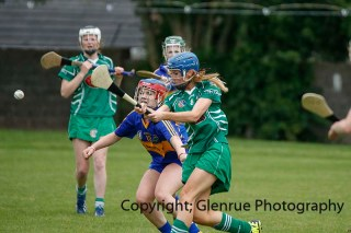 camogie in newcastle west 20-7-2014 (8)