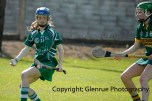 camogie in newcastle west 20-7-2014 (80)