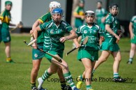 camogie in newcastle west 20-7-2014 (83)