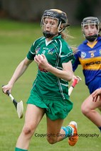 camogie in newcastle west 20-7-2014 (9)