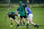 glenroe v dromin minor hurling (10)
