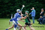 glenroe v dromin minor hurling (12)