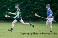glenroe v dromin minor hurling (18)