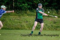 glenroe v dromin minor hurling (19)