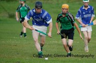 glenroe v dromin minor hurling (20)