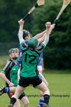 glenroe v dromin minor hurling (4)
