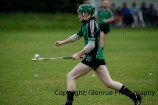 glenroe v dromin minor hurling (5)