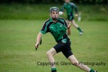 glenroe v dromin minor hurling (6)