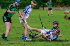 glenroe v feoghanagh minor hurling (15)