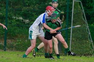 glenroe v feoghanagh minor hurling (18)
