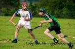 glenroe v feoghanagh minor hurling (20)