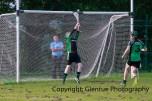 glenroe v feoghanagh minor hurling (21)