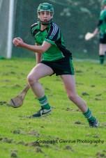 glenroe v feoghanagh minor hurling (24)