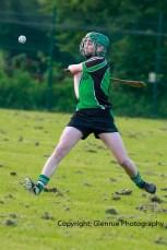 glenroe v feoghanagh minor hurling (25)