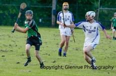 glenroe v feoghanagh minor hurling (29)