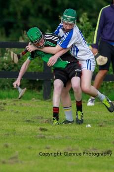 glenroe v feoghanagh minor hurling (3)