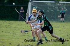 glenroe v feoghanagh minor hurling (30)
