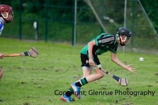 glenroe v feoghanagh minor hurling (31)