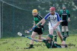 glenroe v feoghanagh minor hurling (33)