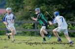 glenroe v feoghanagh minor hurling (35)