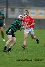 glenroe v mungret league semi final (2)