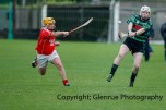 glenroe v mungret league semi final (5)