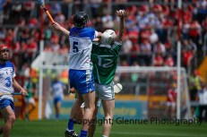 munster hurling finals 2014 (10)