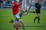 munster hurling finals 2014 (59)