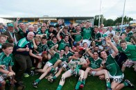 munster minor hurling final replay 2014 (48)